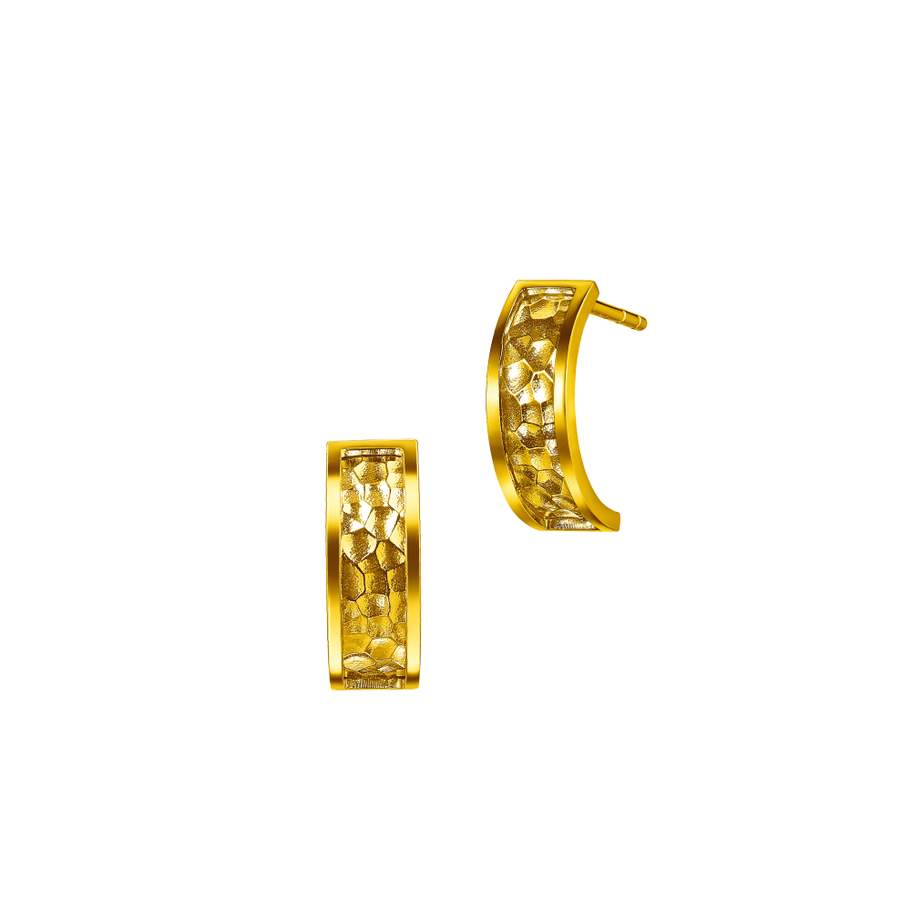Goldstyle Hammered Chic Earrings